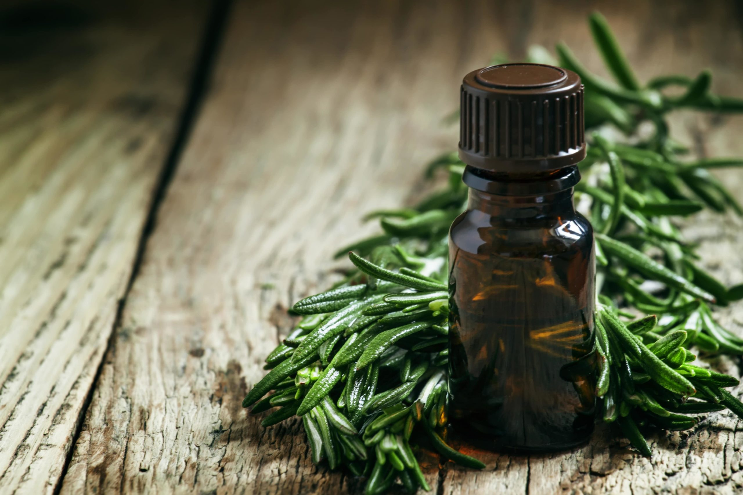 a small bottle bottle of tea tree oil, sat next to a handful of greenery.