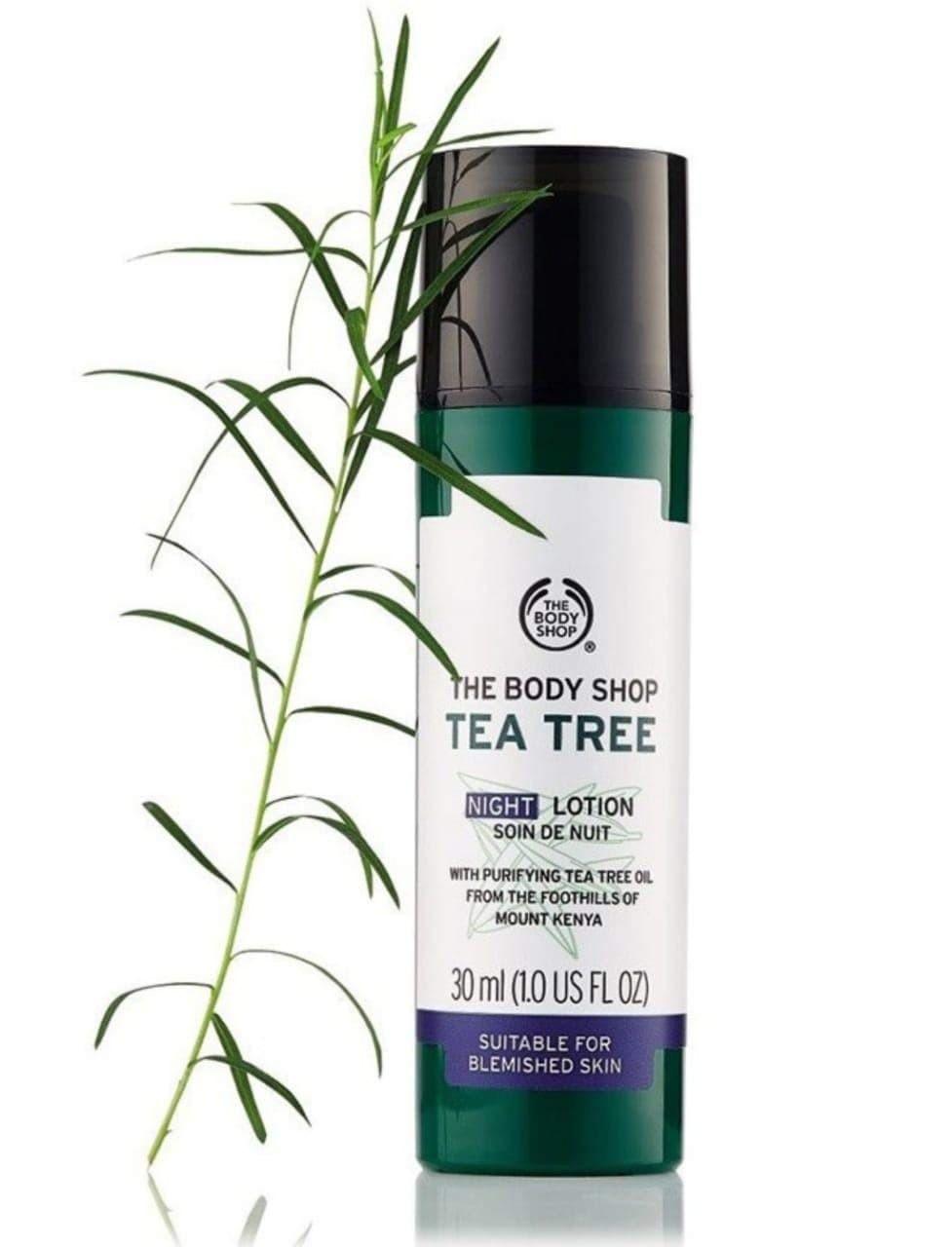 body shop night tea tree lotion.