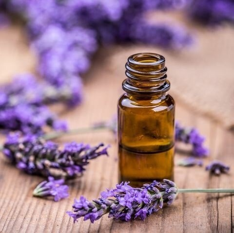 help stress symptoms: a small brown glass bottle, with lavender oil in and lavender cuttings around it.