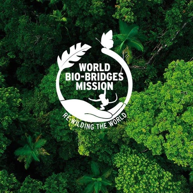 Charitable Brand The Body Shop: world bio-bridges mission logo imprinted above a forest of greenery